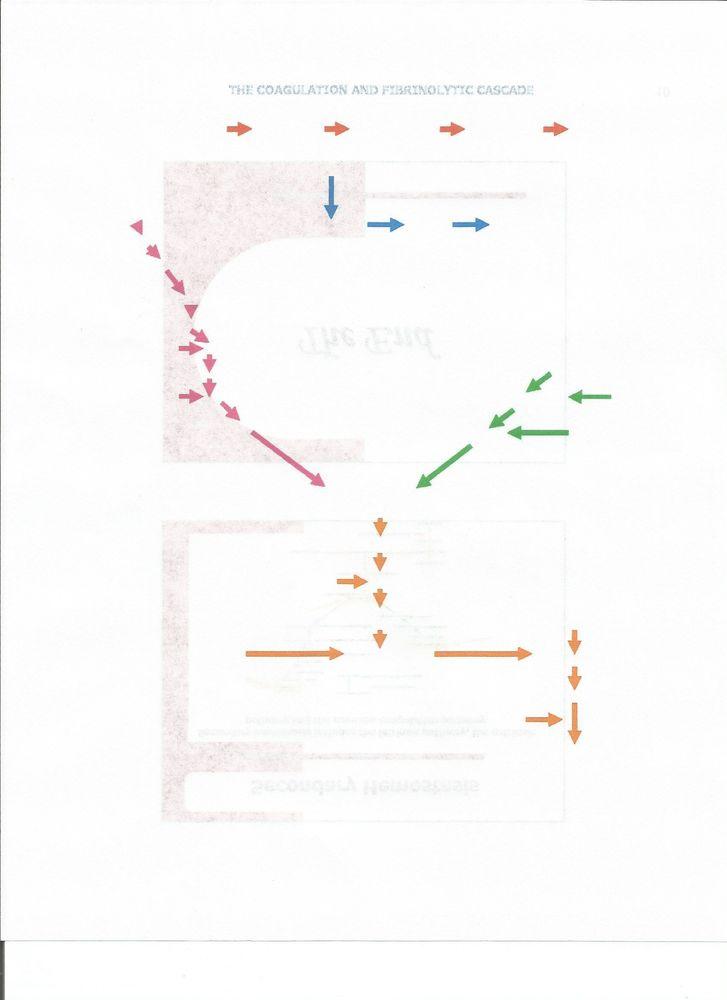 Image_primary_2593677e-2b2a-4b46-bc82-0bb9ec3734cb