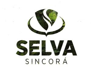 Selva  Sincorá