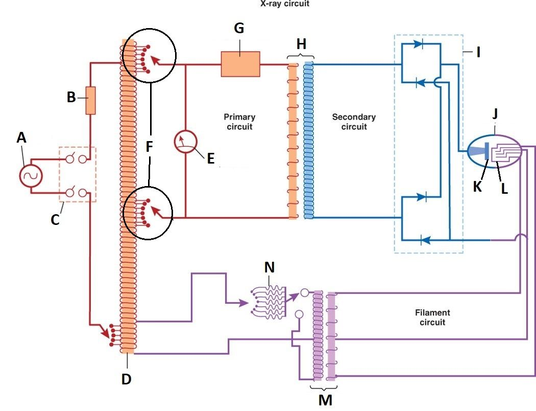breaker c  exposure switch d  autotransformer (kvp selector) e  kvp  meter (voltage meter) f  line compensator (adjusts power supply to x-ray  machine to