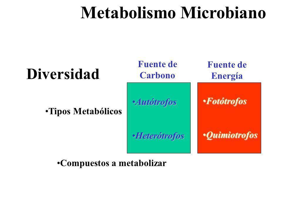 cuestionario de adherencia a la dieta mediterránea con el estrés