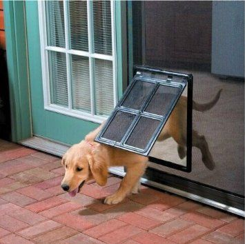 Desktop_puppy_door
