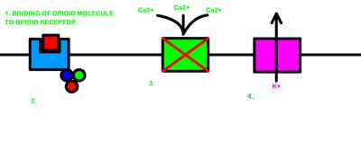 Desktop_c7c0e4a6-3f7e-41b7-b301-36f78a51f7a2
