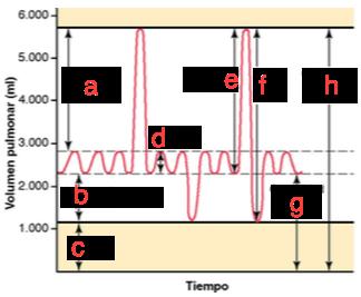 Desktop_d4202bc2-1ba3-4ba1-ab04-a295c1c16a1c