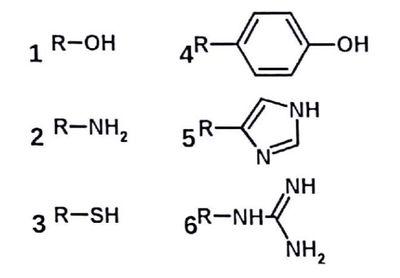 aumento de glucosa en el citosol