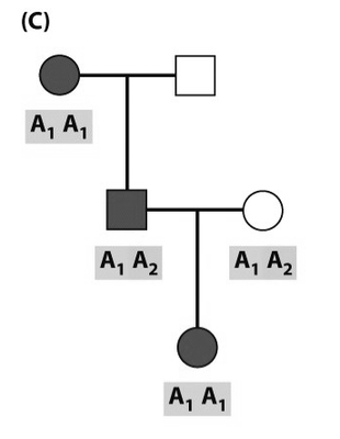 Informative_non-recombinant