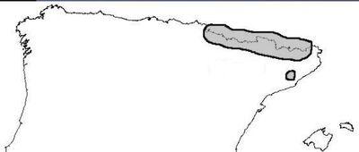 Desktop_abiesalba.mapadistrib