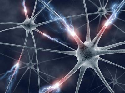 Desktop_neuron