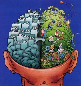 CURRICULUM | Mapa Mental