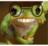 mauriciofrog