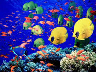 Desktop_200803da-a4f9-45df-a214-0fb960ff542e