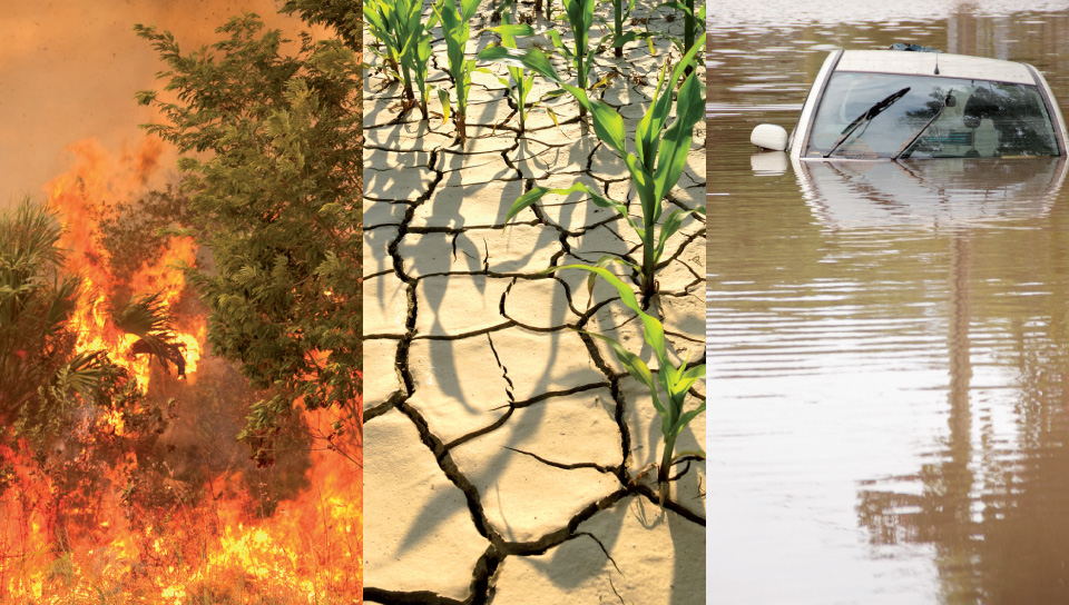 impact of floods in low lying areas environmental sciences essay Impact on the environment: cyclones are quite common in the bay of bengal and often cause much damage in bangladesh and coastal areas of west bengal, orissa, andhra pradesh and tamil nadu bangladesh has been devastated by.