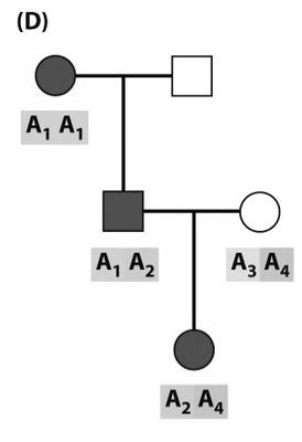 Informative_recombinant